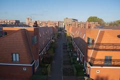 Medanstraat (Jeroen Hillenga) Tags: indischebuurt groningen netherlands nederland city cityscape stad straat street daken roofs