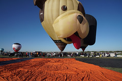 Wag The Dog (AGrinberg) Tags: 77223dogballoon albuquerque balloon fiesta festival new mexico dog explore