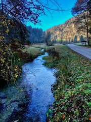 Reschmühlbach on an autumn morning near Oberaudorf, Bavaria, Germany (UweBKK (α 77 on )) Tags: reschmühlbach mühlbach bach stream creek brook water flow morning nature outdoors tree forest mountain oberaudorf bayern bavaria deutschland germany europe europa iphone