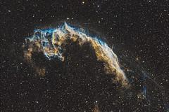 Eastern Veil Nebula (Phil Wollenberg) Tags: ngc 6992 ngc6992 caldwell 33 takahashi software bisque myt qsi deepsky deepskywest pixinsight space light long exposure cosmos nebula veil eastern