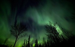 Starry, Starry Night (Katy on the Tundra) Tags: northernlights auroraborealis aurora stars nightsky