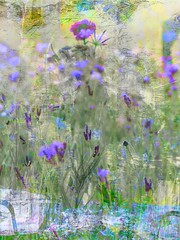 Collage! (DeeAshley) Tags: photo interesante a7rii foto unitedstates urbanexploration photography deeashley dionneashley flickr travel sony dionnehartnett gogoloopie interesting artsy art collage digitalcollage abstract wildflowers flowers flores purple violet iphoneart arty 2019 digitalart