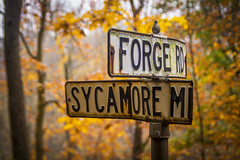 Dead Ends (Thomas James Caldwell) Tags: ridley creek state park pennsylvania pa fall autumn orange yellow foliage leaves street sign old neglected history forge road sycamore mills rd