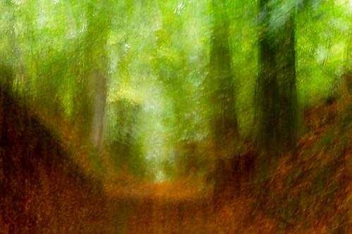 holle weg - narrow hollow road