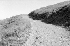 (ADMurr) Tags: california grasslands sbcounty alisol leica m6 dba088