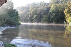 Hot cold (rr18989) Tags: cold river brume mist sunrise lever de soleil frog water eau rivière matin hot