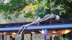 Le Train Fantôme - 7683 (✵ΨᗩSᗰIᘉᗴ HᗴᘉS✵90 000 000 THXS) Tags: skeleton train squelette halloween pairidaiza light sony sonyilce7m3 belgium europa aaa namuroise look photo friends be yasminehens interest eu fr party greatphotographers lanamuroise flickering