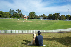 Cricket fans (jeremyhughes) Tags: sydney australia cricket mosman allanborderoval man dog mananddog sports viewers fans sportsfans audience outdoor sport spectators focus concentration appreciation 28mm wideangle ricoh grd ricohgrd oval cricketoval weekend saturday boundary