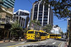 Wills Street - Wellington (andrewsurgenor) Tags: trolleybuses trolleybus transit trackless trolleycoach trolleybuswellington trolebús trolejbusowy trolejbus trolle wellingtontrolleybuses filobus obus gowellington nzbus