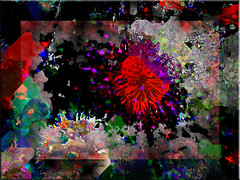 El fondo del mar (seguicollar) Tags: art arte artedigital texturas virginiaseguí imagencreativa photomanipulation filtrosforges fondomarino