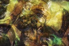 Arcángel (seguicollar) Tags: art arte artedigital texturas virginiaseguí imagencreativa photomanipulation filtrosforges arcángel gabriel espada brazo alas rostro nimbo