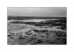 Penmarch (Punkrocker*) Tags: nikon s2 rf rangefinder nikkor 50mm 5014 sc film kodak tmax 100 nb bwfp monochrome bnw plage beach people mer sea penmarch finistère pennarbed bretagne brittany breizh france