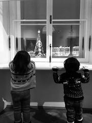 San Pietroburgo Saint-Petersburg (napoleone.bonaparte) Tags: children russia holiday xmas christmas christmasthree ermitage