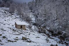 La cabaña y el río (SantiMB.Photos) Tags: 2blog 2tumblr 2ig conangles nieve snow otoño autumn bosque forest cabaña cabin arroyo creek geo:lat=4262529282 geo:lon=076738682 geotagged senet cataluna españa