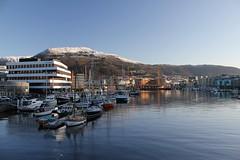 Solheimsviken -|- Habour day (erlingsi) Tags: solheimsviken seilbåter båter boats bergen hordaland hamn harbour explored