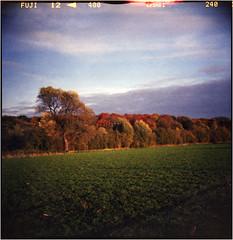 . . . a few days later (Ulla M.) Tags: dianaf selfdeveloped selbstentwickelt canoscan8800f toycamera toycam lomo lomography mediumformat mittelformat umphotoart filmphotography analog analogue analogphotography filmisnotdead filmshooter autumn herbst tetenalcolortec