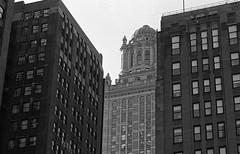The Birdcage (Alex Luyckx) Tags: chicago illinois downtown urban city loop details architecture cta buildings fall vacation trip minolta minoltamaxxum9 maxxum9 slr 135 35mm minoltamaxxumafmacro100mm128 macodirect rollei rolleirpx400 rpx400 asa320 photographersformulary pyrocathd 11100 nikoncoolscanved adobephotoshopcc bw blackwhite film filmphotography believeinfilm filmisalive filmisnotdead