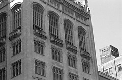 Tall Windows (Alex Luyckx) Tags: chicago illinois downtown urban city loop details architecture cta buildings fall vacation trip minolta minoltamaxxum9 maxxum9 slr 135 35mm minoltamaxxumafmacro100mm128 macodirect rollei rolleirpx400 rpx400 asa320 photographersformulary pyrocathd 11100 nikoncoolscanved adobephotoshopcc bw blackwhite film filmphotography believeinfilm filmisalive filmisnotdead