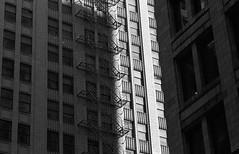 Fire Escape (Alex Luyckx) Tags: chicago illinois downtown urban city loop details architecture cta buildings fall vacation trip minolta minoltamaxxum9 maxxum9 slr 135 35mm minoltamaxxumafmacro100mm128 macodirect rollei rolleirpx400 rpx400 asa320 photographersformulary pyrocathd 11100 nikoncoolscanved adobephotoshopcc bw blackwhite film filmphotography believeinfilm filmisalive filmisnotdead