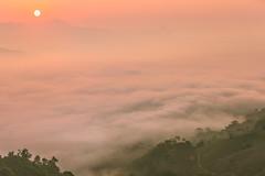 _Y2U4406-11.2.0919.Bản Dọi.Tân Lập.Mộc Châu.Sơn La (hoanglongphoto) Tags: asia asian vietnam northvietnam northernvietnam northwestvietnam landscape scenery vietnamlandscape vietnamscenery mocchaulandscape morning clouds valley mist mountain flanksmountain hdr earlyfrost earlymorningfog canon canoneos1dx canonef70200mmf28lisiiusm morningdew tâybắc phongcảnh phongcảnhmộcchâu mâymộcchâu thunglũngmâymộcchâu mây buổisáng sươngmù sươngsớm núi sườnnúi cloudvalley theforest rừng nature thiênnhiên thiênnhiênmộcchâu sơnla mộcchâu tânlập bảndọi morningclouds mâybuổisáng minimalisme sun mặttrời happyplanet asiafavorites