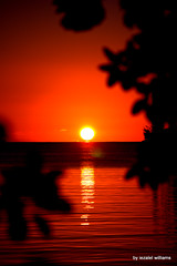 Sun Setting by iezalel williams IMG_3941-004 (iezalel7williams) Tags: sun sky water sunset photography nature beautiful photo red orange reflection sea seawater natural canoneos700d nice ripples silhouette yellow beauty black goldenhour happylife high energy vibration light love landscape seascape planetearth thinkpositive thankyou