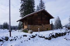 DSC05163 (Bergwandern Alpen) Tags: alpen alps bergwandern hiking sellamatt toggenburg obertoggenburg berghütte alphütte mountainhut winter wintereinbruch schnee neuschne snow feuerholz brennholz