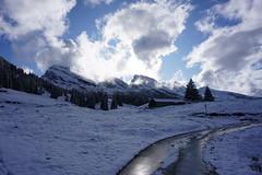 DSC05173 (Bergwandern Alpen) Tags: alpen alps bergwandern hiking toggenburg obertoggenburg sellamatt churfirsten berghütte alphütte mountainhut winter wintereinbruch neuschnee schnee snow wolken wolkenspiel clouds alp dämmerung