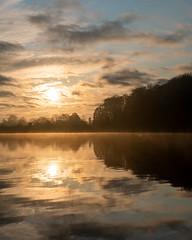 DSC00058 (Paddy-NX) Tags: 2019 20191110 bealpha bygholmsø denmark eu europe horsens lake landscape landscapephotography sony sonya77ii sonyalpha sonyalpha77ii sonyimages sonysal1650 sunrise centraldenmarkregion