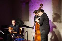Andrea Ulrich Trio, Alte Trotte 09/11/2019