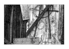 Closed structures (K.Pihl) Tags: wood leicam5 50mmsummiluxf14 monochrome schwarzweiss film hc110b pellicolaanalogica blackwhite grafitti bw kodaktmax400 analog door