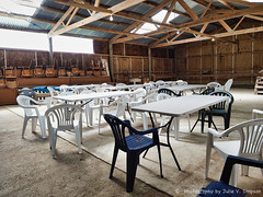 Plastic tables and chairs-gone for the day (Julie V. Simpson Photographer) Tags: green trees leaves nature shadows naturalworld instadaily instagram instanature naturephotography naturelovers natureza natureperfection newzealand waimatenorth apshow roses horses tractor