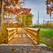 1 1 Beaverbrook trails-2
