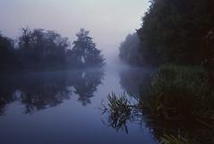 Misty riverbank (mdpF2) Tags: leica mp summicron 352 asph ektachrome e100 tetenal slide film rural countryside river nature