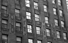 Gold Leaf (Alex Luyckx) Tags: chicago illinois downtown urban city loop details architecture cta buildings fall vacation trip minolta minoltamaxxum9 maxxum9 slr 135 35mm minoltamaxxumafmacro100mm128 macodirect rollei rolleirpx400 rpx400 asa320 photographersformulary pyrocathd 11100 nikoncoolscanved adobephotoshopcc bw blackwhite film filmphotography believeinfilm filmisalive filmisnotdead