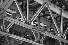 CTA (Alex Luyckx) Tags: chicago illinois downtown urban city loop details architecture cta buildings fall vacation trip minolta minoltamaxxum9 maxxum9 slr 135 35mm minoltamaxxumafmacro100mm128 macodirect rollei rolleirpx400 rpx400 asa320 photographersformulary pyrocathd 11100 nikoncoolscanved adobephotoshopcc bw blackwhite film filmphotography believeinfilm filmisalive filmisnotdead