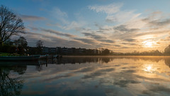 DSC00059 (Paddy-NX) Tags: 2019 20191110 bealpha bygholmsø denmark eu europe horsens lake landscape landscapephotography sony sonya77ii sonyalpha sonyalpha77ii sonyimages sonysal1650 sunrise centraldenmarkregion