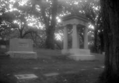 untitled (kaumpphoto) Tags: b2cadet boxcamera 120 ilford bw black white light minneapolis cemetery graveyard tree bark memorial garden lawn grass headstone marker gravestone stone