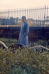 Cemetery in Disrepair (AntyDiluvian) Tags: england greatbritain britain london vintage 1973 hotel londonparkhotel elephantandcastle linda cemetery graveyard headstone gravemarker overgrown disused