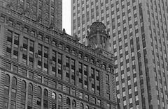 Jeweller (Alex Luyckx) Tags: chicago illinois downtown urban city loop details architecture cta buildings fall vacation trip minolta minoltamaxxum9 maxxum9 slr 135 35mm minoltamaxxumafmacro100mm128 macodirect rollei rolleirpx400 rpx400 asa320 photographersformulary pyrocathd 11100 nikoncoolscanved adobephotoshopcc bw blackwhite film filmphotography believeinfilm filmisalive filmisnotdead