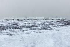 Churchill Canada Tundra lodge (J.Dijkstra) Tags: canada churchill ijsberen