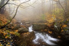 The misty autumn embrace (J.u.l.i.u.s.) Tags: nature new ngc natur inexplore explore water wasser waterfall waterfalls landscape landscapes balkan bulgaria autumn fog forest