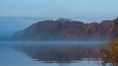 DSC00069 (Paddy-NX) Tags: 2019 20191110 bealpha bygholmsø denmark eu europe horsens lake landscape landscapephotography sony sonya77ii sonyalpha sonyalpha77ii sonyimages sonysal70300g sunrise centraldenmarkregion