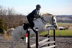 (furlong47) Tags: horses horse horsebackriding horseshow harvestviewstables harvestview hvs combinedtest stadiumjumping jumping jump jumps