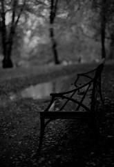 Come, sit for a while (fromfarbeyond) Tags: spotmatic pentax hagaparken ilford 3200 rain bench park bw autumn höst sverige sweden rainy grainy grain film analog leaves noir et blanc delta