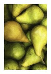 (B. jeweled) Tags: hss sliderssunday paintingautumnpears fruitstand kingorchards traversecitymi