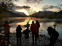 The Mobbed Tree (PentlandPirate of the North) Tags: llynpadarn fakenews lonetree togs dawn permits snowdonia northwales photographers