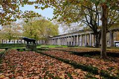 Museumsinsel (RIch-ART In PIXELS) Tags: berlin deutschland germany mueseumsinsel tree leaves pillar grass xt20 fujifilmxt20 architecture