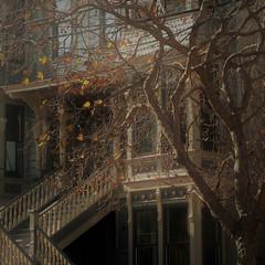 autumn fade fx (msdonnalee) Tags: tree branches barebranches eerielight victorianhouse victorianarchitecture lastautumnleaves digitalfx hss facade fachada facciate stairway lightfx