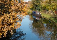 Bridgewater canal Grappenhall 02 nov 19 (Shaun the grime lover) Tags: warrington autumn leaves reflection water cheshire grappenhall bridgewater canal boat