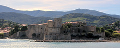 Collioure - Anse de la Baleta 5875 (franck.barré) Tags: collioure